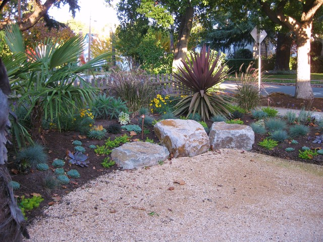 Drought Friendly Landscaping Ideas Landcape Solutions