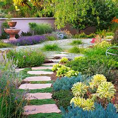 Drought Friendly Landscaping Ideas & Drought Friendly Landscaping Ideas - LANDCAPE SOLUTIONS